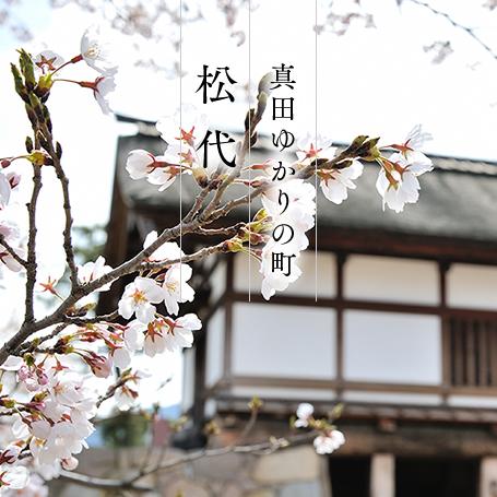 matsushiro_index