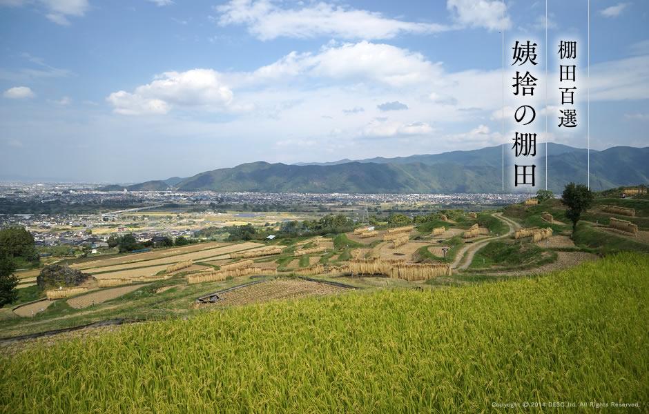 tanada_aki_1